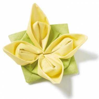 Vouwbare servetten groen en geel