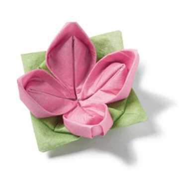 Vouwbare servetten groen en roze kopen