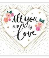 Servetten bruiloft love 3 laags 40 stuks